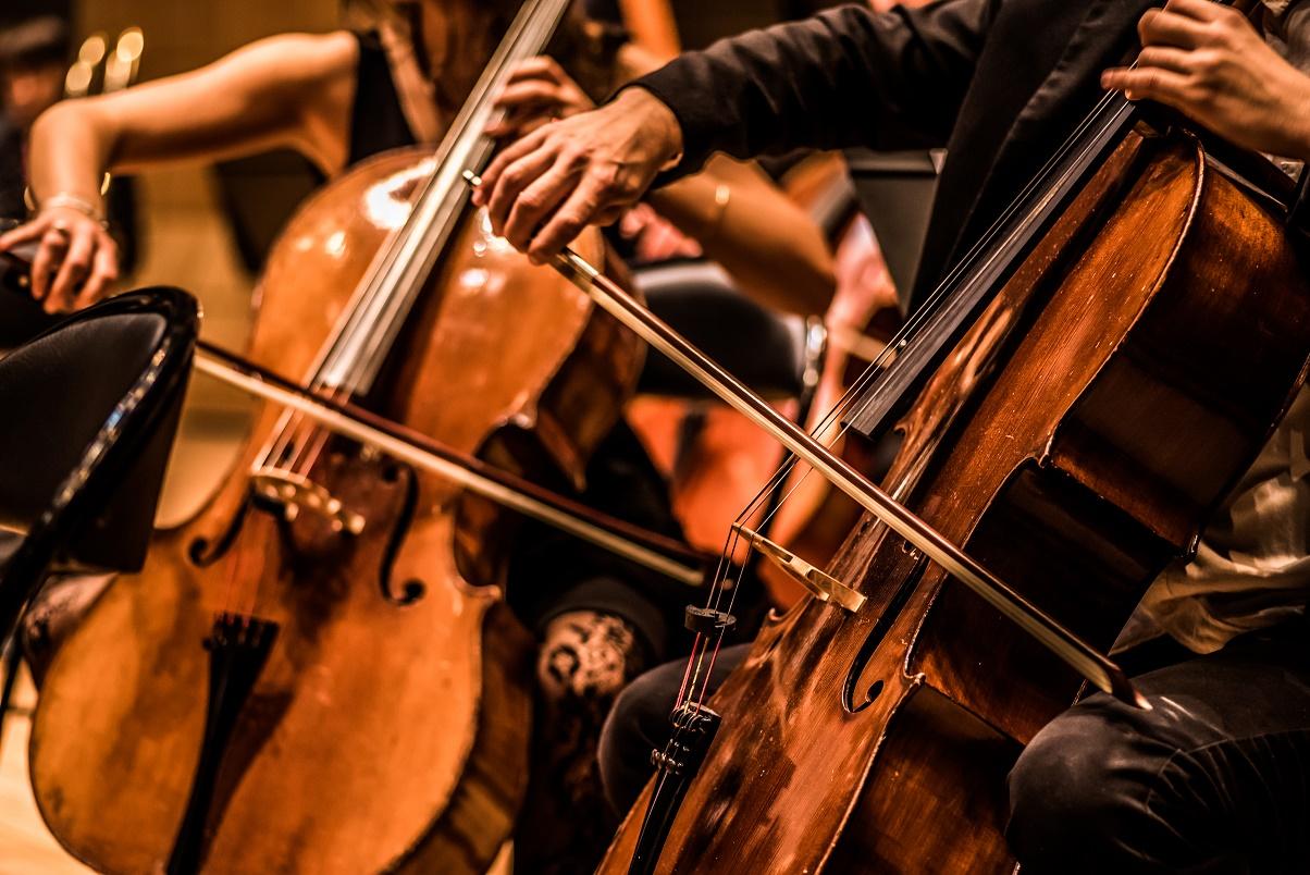 Orchestre Étudiant de Toulouse © Nicolas Wolsztynski